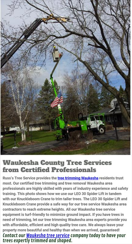 Russ's Tree Service - Tree Service - Muskego, WI - Thumb 3