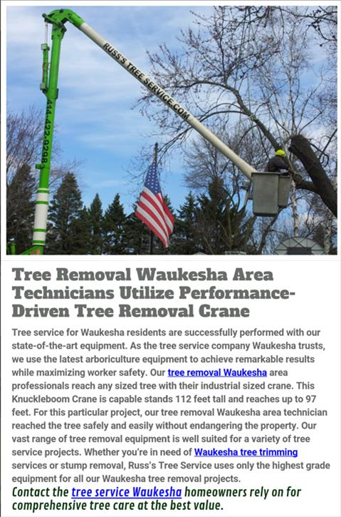 Russ's Tree Service - Tree Service - Muskego, WI - Thumb 4